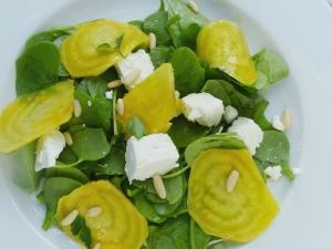 saladepourpier